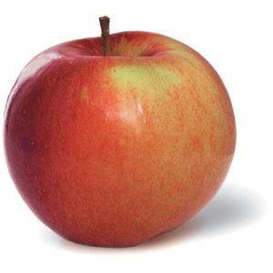 Eple rødgrønt