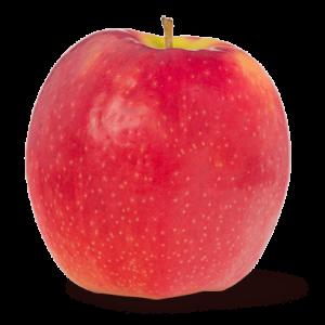 Pink lady eple