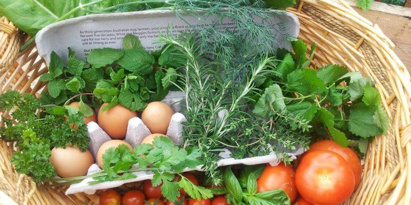 bærekraftig mat i norge
