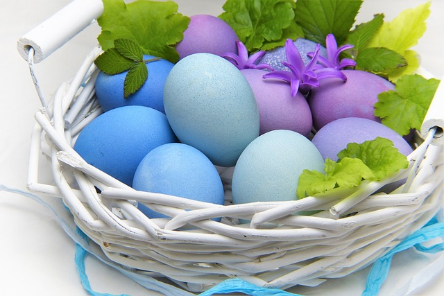 quiz fakta om egg