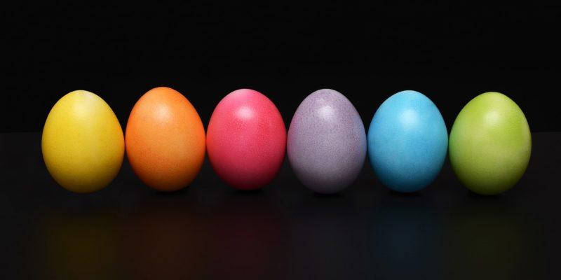 quiz om egg