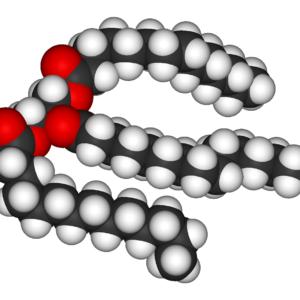 Fettmolekyl